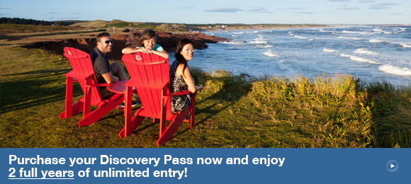 Purchase your Discovery Pass now and enjoy