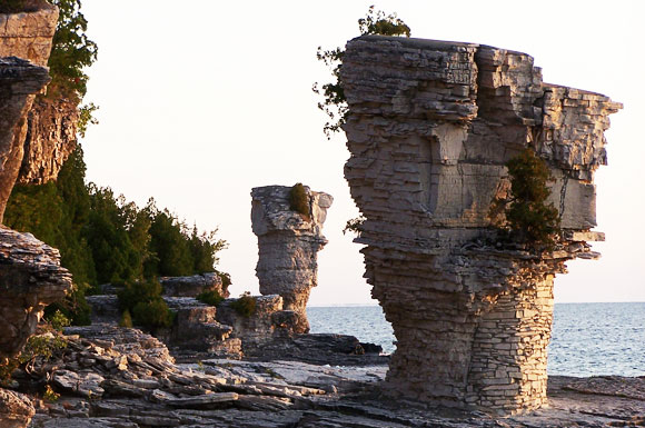 The 'Flowerpot' rock stacks