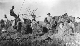 Famille ukrainienne travaillant à la récolte