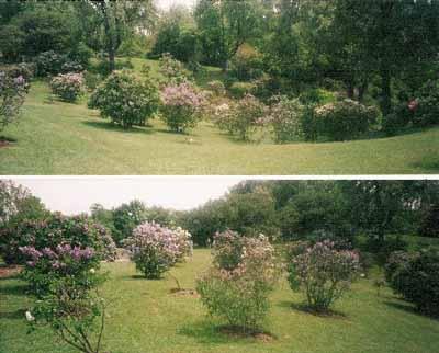 Parks Canada - Royal Botanical Gardens National Historic Site of Canada