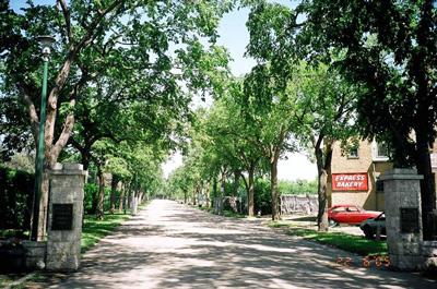 Parks Canada - Next of Kin Memorial Avenue National Historic