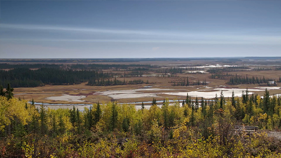 Explore Canada's largest national park and one of the largest parks in the world! Wood Buffalo National Park's on-going efforts at cooperative management have roots in the rich history of the surrounding Indigenous communities. Traditional use of certain park resources by local Indigenous groups, including Métis communities is an important part of the park's cultural history.
