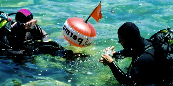 Two divers check their equipment