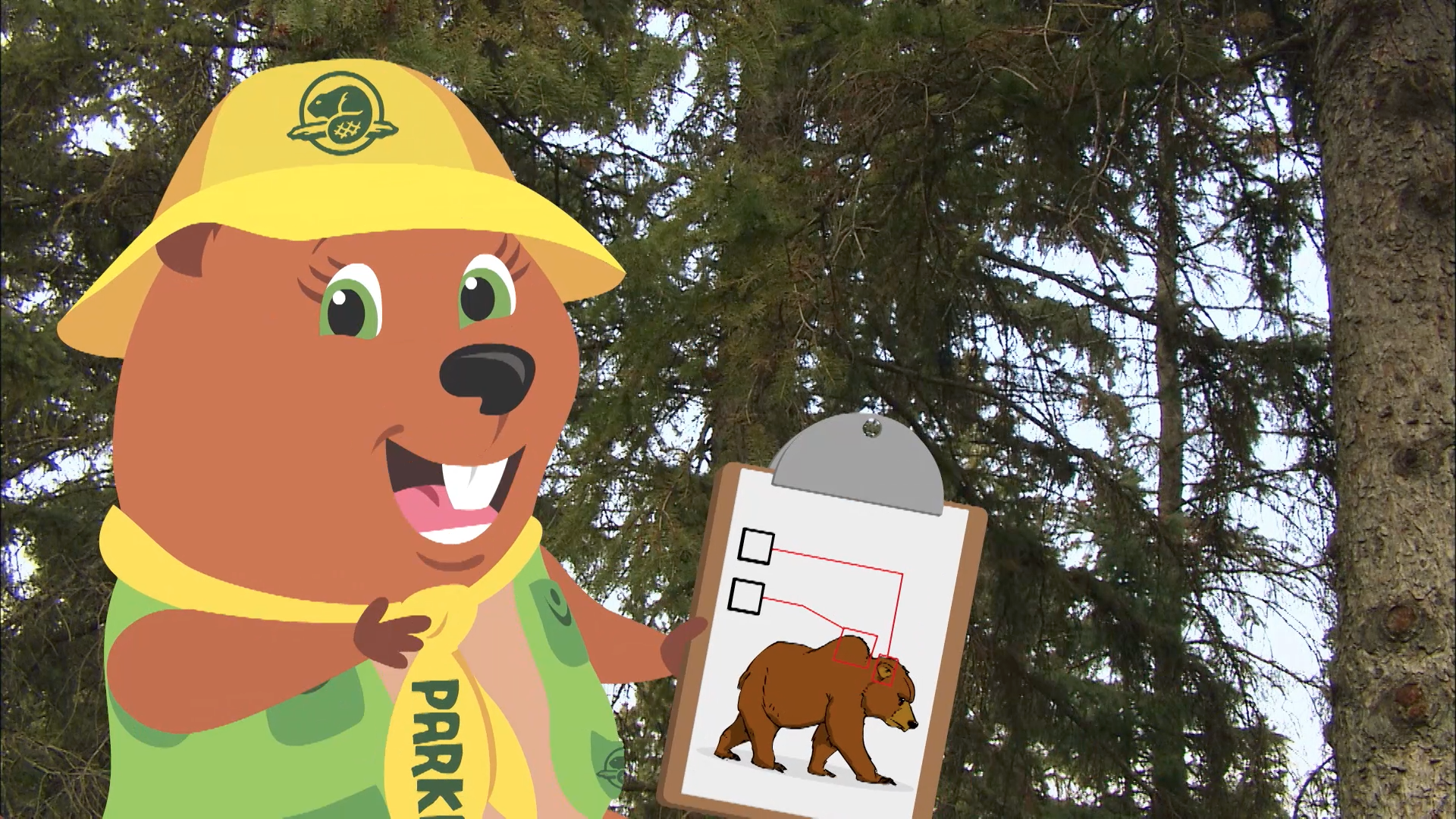 Parka is on a search for a Grizzly Bear and discovers that Grizzlies have a hump on their backs and short round ears.