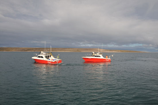 Kinglett and Gannet at O'Reilly Island during a break from surveying for a crew change