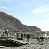 Numerous visitors on rocky beach in front of cliff.