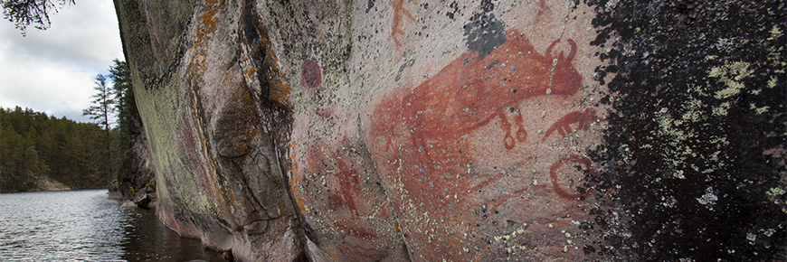 This pictograph in the shape of a bison appears on a cliff face rising from the waters of Artery Lake. It is reddish in colour.