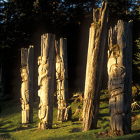 Five totem poles illuminated by the setting sun in forest clearing.