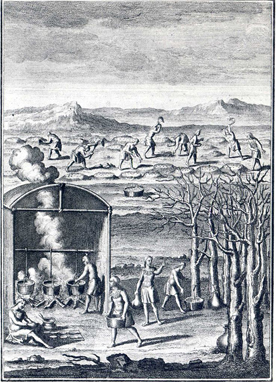 Natives making maple syrup. From an engraving in Lafitau's Moeurs des sauvages amériquains, 1724.