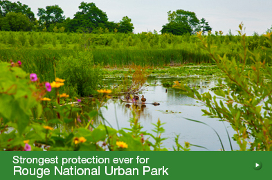 Strongest protection ever for Rouge National Urban Park