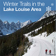 Winter Trails in the Lake Louise Area
