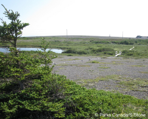 Limestone barrens on the Dorset Trail. © Parks Canada/S. Stone