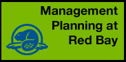 Management Planning at Red Bay