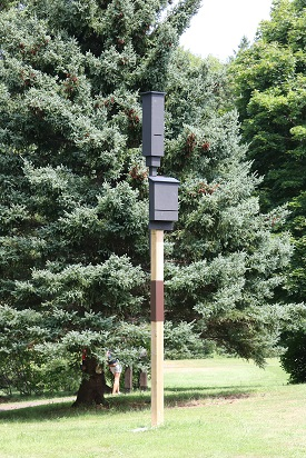 Bat boxes on post, Port Royal NHS