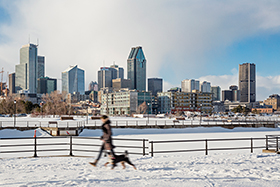 A walker and his dog in front of the Peel Basin and downtown Montréal in winter