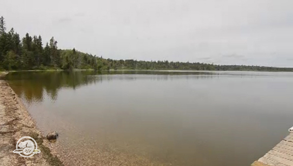 Located 35 km (22 miles) north of Wasagaming off Hwy 10. Moon Lake offers a wide range of unserviced sites suitable for tents and RVs including private wooded sites and sites overlooking Moon Lake. Accessible sites are available for visitors with mobility impairments. Don't miss the 9.2 km (5.75 miles) Moon Lake trail that circles the lake.