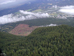 Aerial view of the Redstreak Restoration Area. Restored block contrasts with surrounding ingrown forest.