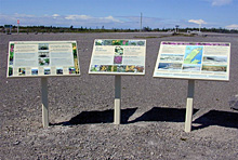 Interpretive signs on the limestone barrens