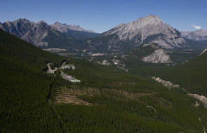 Aerial view of forest thinning work © Parks Canada / Chris Siddall
