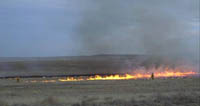 Prescribed burning in Grasslands National Park