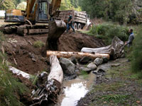 Installation of large logs and root wads