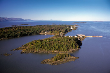 Aerial view of forested island with quay.