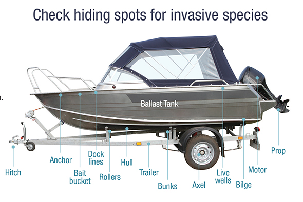 Diagram of a boat showing places where mussels may attach without being clearly visible