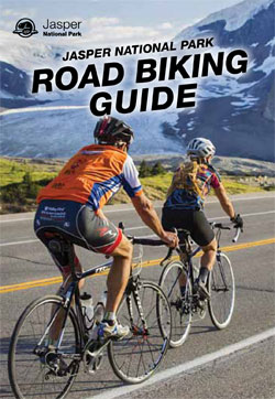 Road Biking Guide