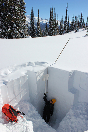 Parks Canada staff standing in a snow pit holding a shovel straight up, above their head. The pit is so deep, the shovel doesn't reach the surface of the snow pack.
