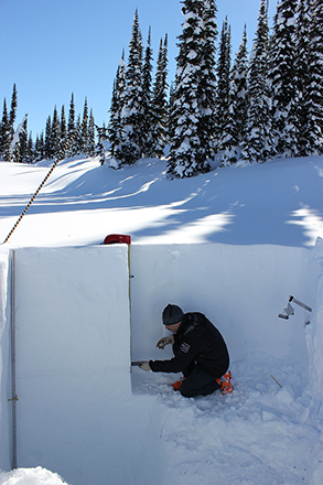 Parks Canada staff inspecting snow crystals.