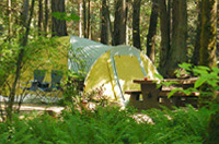 McDonald Campground, Vancouver Island