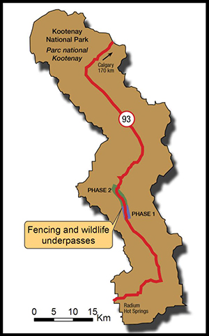 Map of fencing and wildlife underpasses on Highway 93 South