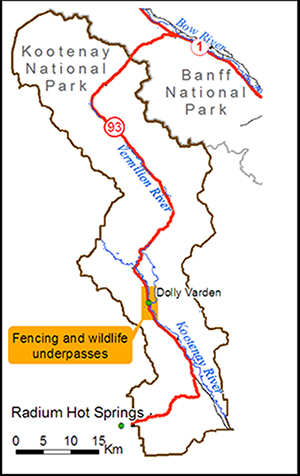 Map of fencing and wildlife underpasses