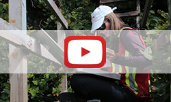 Video - West Coast Trail Bridge Inspection