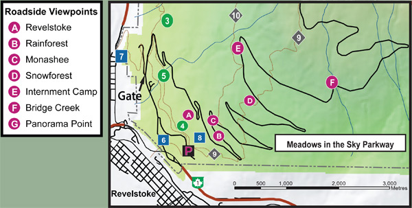 A map showing the roadside viewpoints on the Meadows in the Sky Parkway