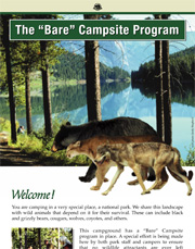 Bare Campsite Program