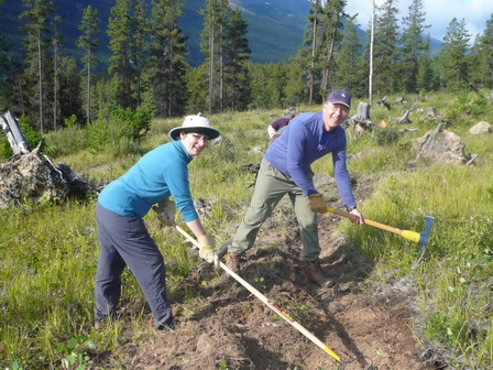 Volunteers rehabilitating trails in Jasper National Park