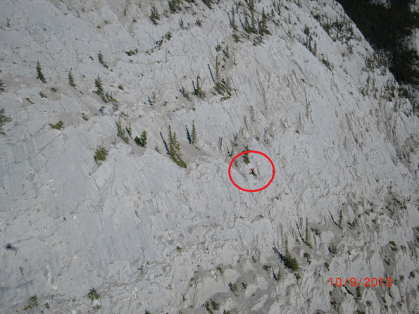 Heli-sling rescue of a Cliffed-out dog on Morro Peak