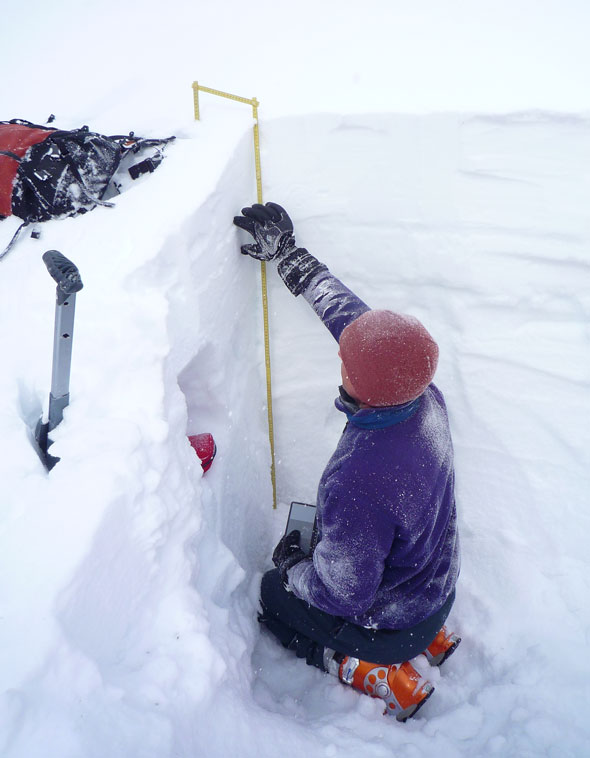 Parks Canada's Avalanche Forecasters are in the field everyday through the winter season studying the snowpack.
