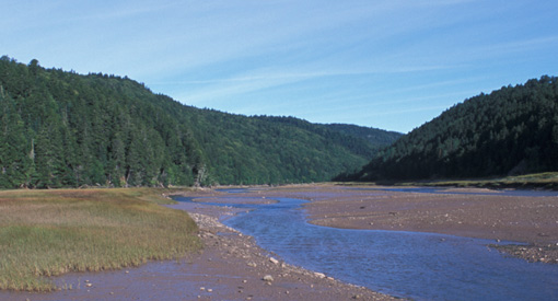 View of Upper Salmon River