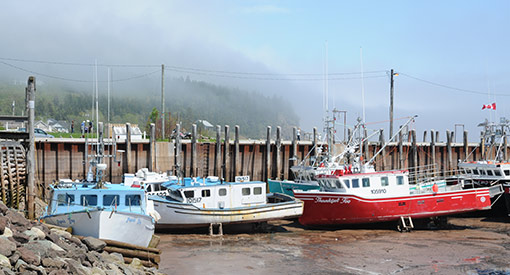 Boats of the village of Alma at low tide
