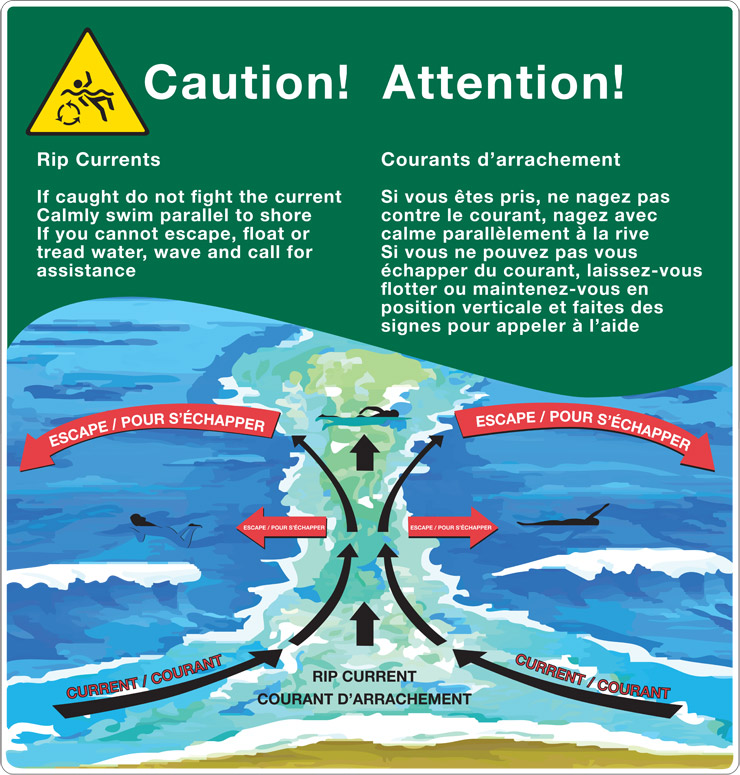 An illustration describing how to escape from a rip current