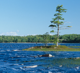 Wind on Peskowesk Lake