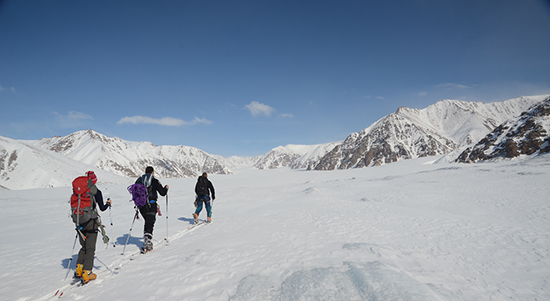 Ski Touring in Sirmilik National Park