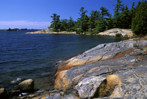 Windswept pines on the rocky Canadian Shield shoreline of Georgian Bay Islands National Park of Canada