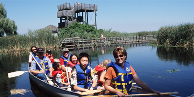 Cruise among the cattails with an interpreter in a freighter canoe. Discover a side of Point Pelee National Park few have experienced.