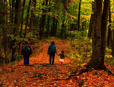 Rouge National Urban Park - Fall Walks