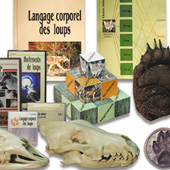 Photo of the educational material included in the Wolf Edukit
