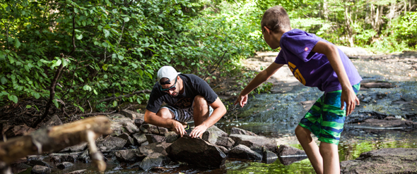 A father and son discover insects living in a brook.