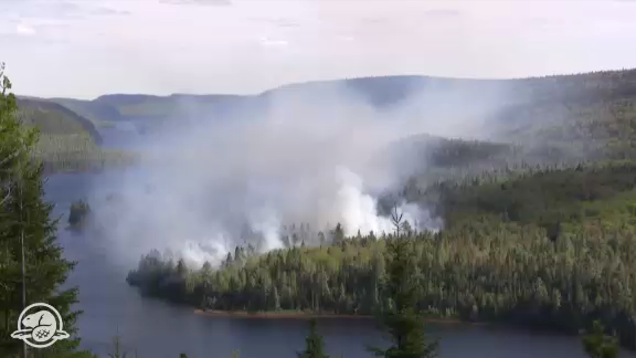 La Mauricie National Park is Being Restored to Health - 